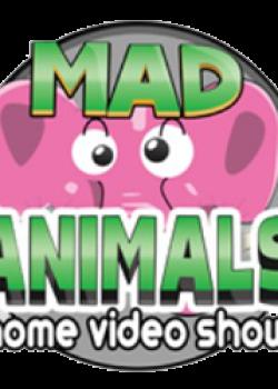 mad-animals